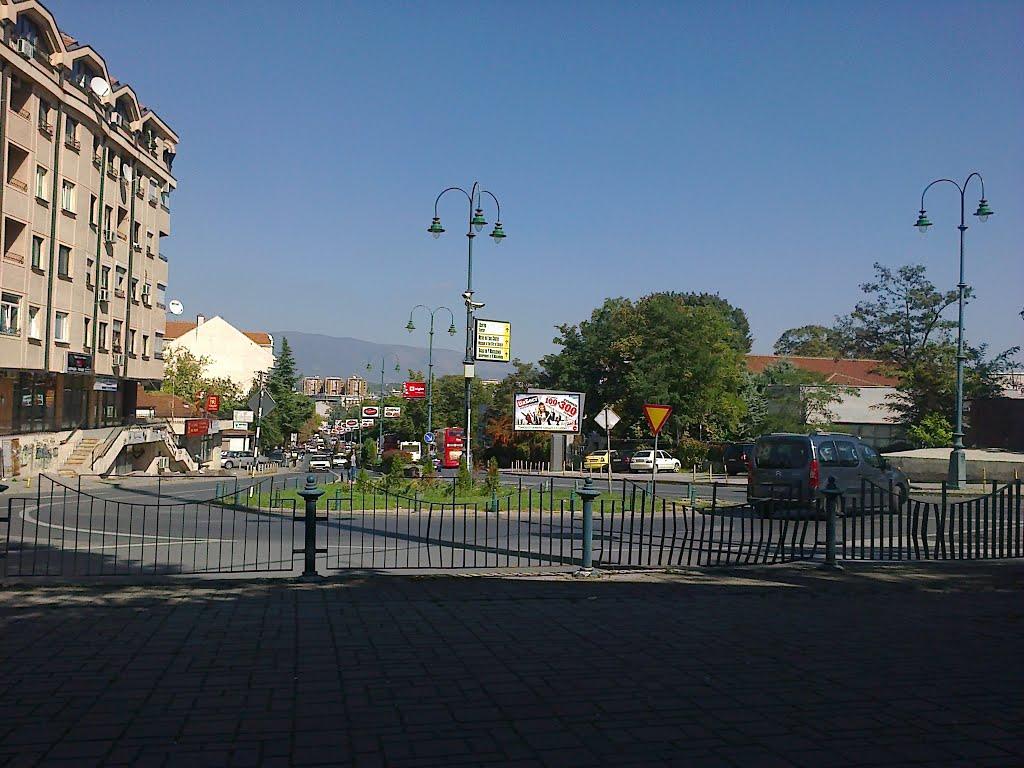 """Мирен протест на """"Водњанска"""": Стоп за урбаната мафија на Водно"""
